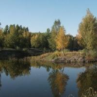 Суд высказался «за» развлекательный комплекс и вырубку деревьев в парке 30-летия ВЛКСМ