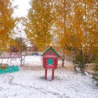 На неделе дневная температура в Омске не поднимется выше нуля