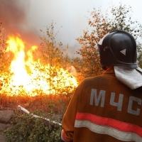 В Омской области пожарные и погода справились с огнём