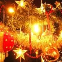 Вторая новогодняя елка появилась в Омске