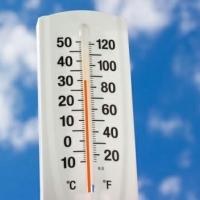 В Омской области жара сохранится до конца июня