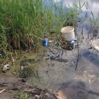 Уборкой общественных территорий Омской области занимаются в рамках акции «Зеленая Россия»