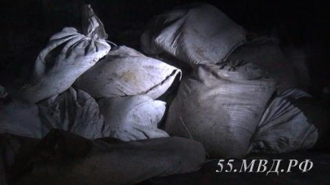 Четверых омичей осудили за хищение ценных биологических ресурсов