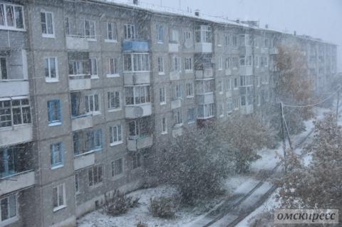 В Омске и области выпал первый снег (фото)