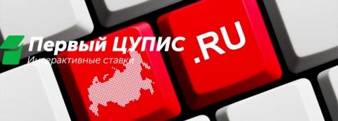 Государство безуспешно пытается урегулировать рынок онлайн ставок на спорт в России