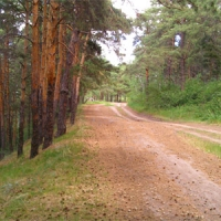 Первые дни июня в Чернолучье обеспечен свободный проезд