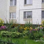 Построили дом – восстановите двор