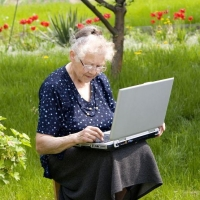 Нужен ли дачникам интернет?