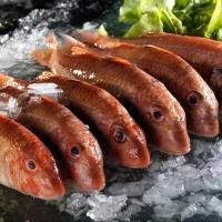 Что мы знаем о рыбе барабульке: как готовить, где купить
