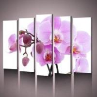 Модульная картина с орхидей – для любительниц экзотики