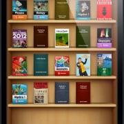 Библиотеки разрешили омичам скачивать книги