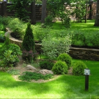 Облагораживание территории растениями