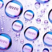 Интернет бизнес и его продвижение