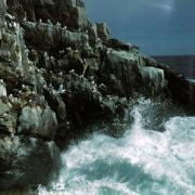 Острова Баренцева моря