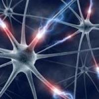 Куда пойти учиться на невролога