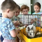 """В Омске для особых детей откроют """"живой уголок"""""""