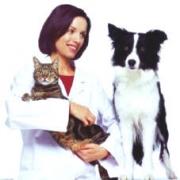 Спектр услуг в ветеринарной клинике