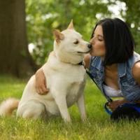Животное и хозяин похожи, или как подобрать собаку