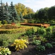 В Омске посадят в 2014 году 3 миллиона цветов