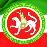 Развитие профессионального образования в Татарстане в 2017 – 2019 годах