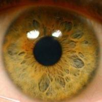 Лечение заболеваний сетчатки глаза