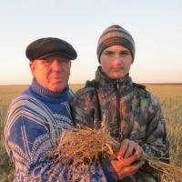 Омского фермера лишили возможности вылечить внука