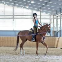 В Омске появится новый конный центр