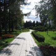 В Омске благоустроят дендропарк имени Грибанова в 2014 году