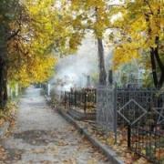 Омские кладбища внесут в международный некролог