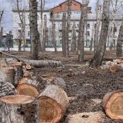 Митинг против застройки парка 30-летия ВЛКСМ развернётся напротив мэрии