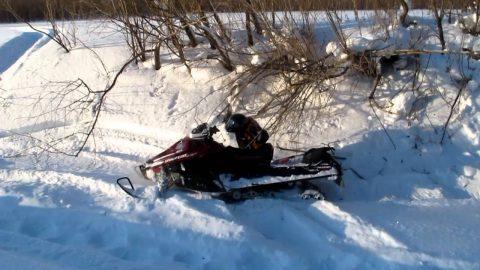 Тело, разбившегося на снегоходе человека, принадлежит экс-министру здравоохранения Омской области
