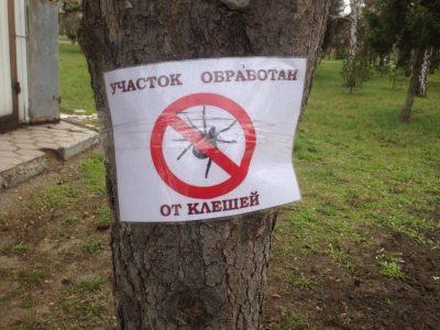Парки Омска обработают от клещей до 25 мая