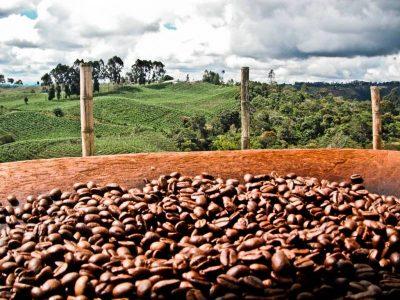 Bloomberg: Коронавирус может оставить кофеманов без любимого напитка