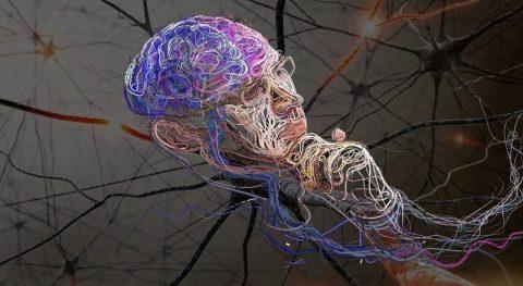 Лекарства от коронавируса нашла нейросеть