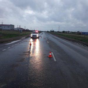 В Омской области насмерть сбили мужчину на трассе