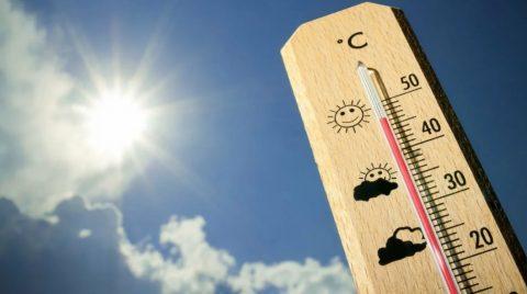 В Омске будет аномально жарко в ближайшие дни