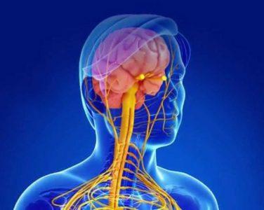 Группы риска по заболеванию рассеянным склерозом назвал врач