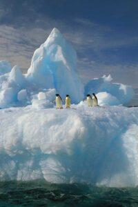 Ученые объяснили похолодание в Антарктиде