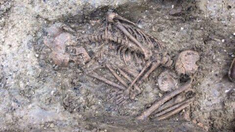 Останки средневековой женщины с тропическим сифилисом исследователи нашли в Литве