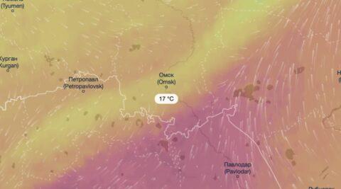 Синоптики прогнозируют аномально холодный июль в Омской области
