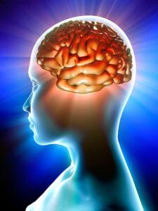 Учёные назвали ежедневные странности нашего мозга