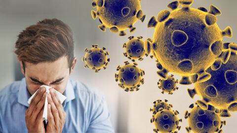 97 человек заразилось коронавирусом в Омске за минувшие сутки