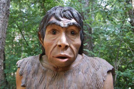 Ученые: расшифрован геном неандертальца, жившего на Алтае