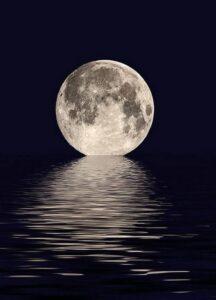 463 метра по обратной стороне Луны прошел китайский Луноход
