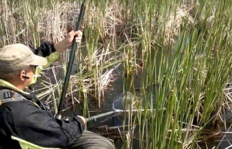Омского рыбака подстрелили в первый день сезона охоты