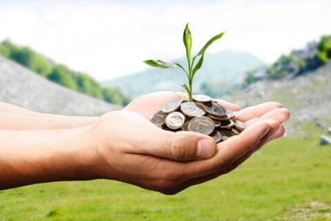 Как выгодно приумножить свои сбережения?
