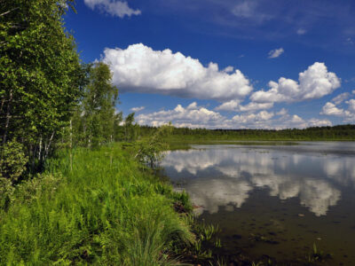 На Шайтан-озере в Омской области незаконно требуют плату с посетителей