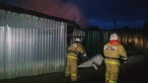 600 кур и 5 свиней сгорели на пожаре в Омской области