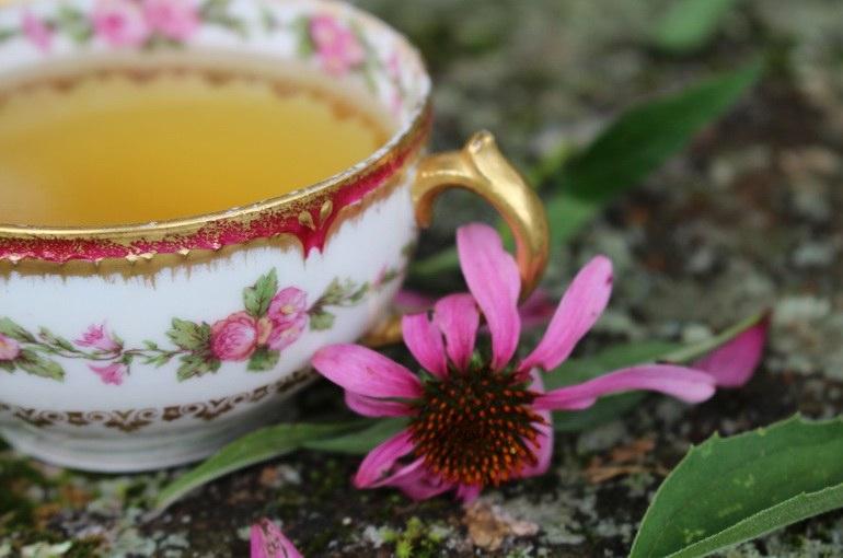Назван вид чая, который укрепляет иммунную систему и подавляет раковые  клетки - ОмскПресс