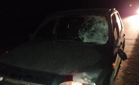 В Седельниковском районе внедорожник сбил пешехода